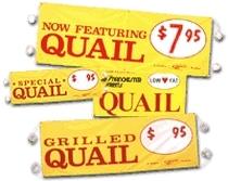 shop for quail