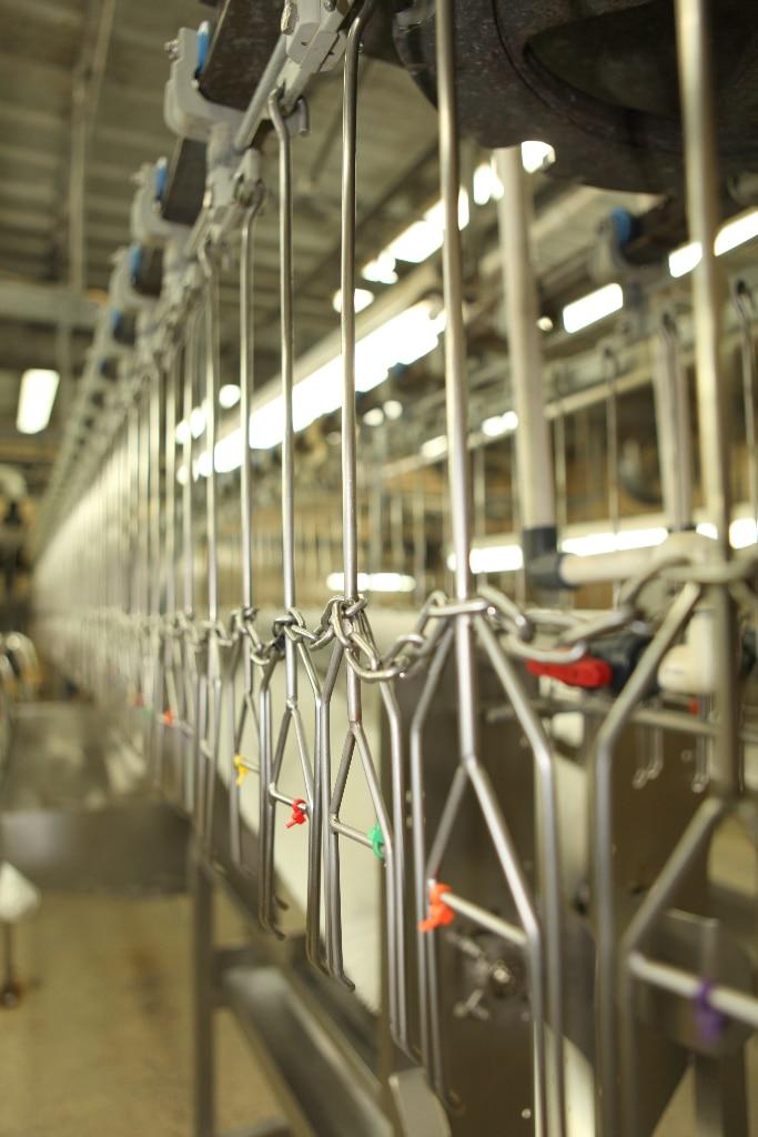 inside quail factory
