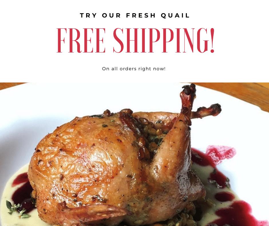 free shipping Try Our Fresh Quail